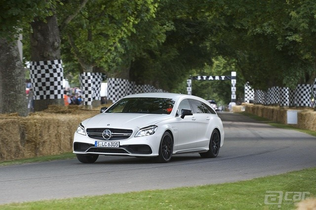 mercedes-goodwood-festival-image-16.jpg.pagespeed.ce.7026BEufSk