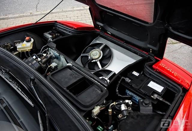 Ferrari-Enzo-Mule-9