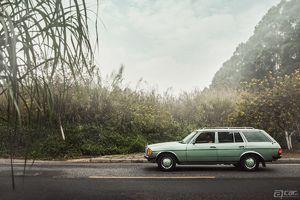 啊车网精美图集 Mercedes-Benz 230TE